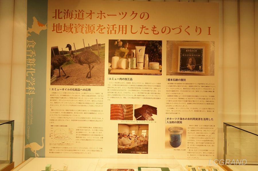 現在は北海道オホーツク展が開催しています