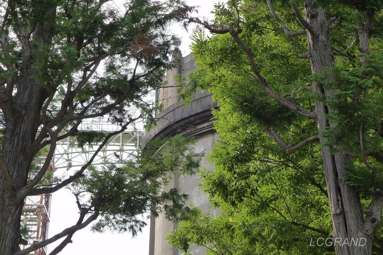 木々に囲まれる駒沢給水塔の風景